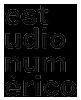 Estudio Numerico Logo